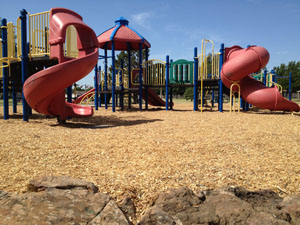 Engineered Wood Fiber for Playgrounds